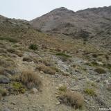 08 Tramo Superior Quebrada Las Gualtatas