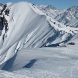 25 Huellas en la Nieve