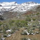 03 Quebrada Del Ingenio