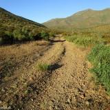 03 Camino a las Antenas del Co. Juan Soldado