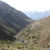 28 Quebrada Estero del Ingenio