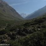 01 Cajon de Yerba Loca