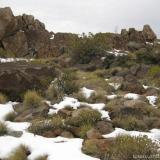 14 Roquerios Bajo la Cumbre