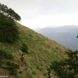 07 Saliendo al Claro entre el Bosque