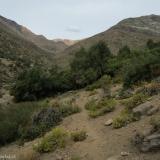 07 Llegando al Encuentro de las Quebradas Las Bayas y Las Gualtatas