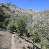 05 Quebrada El Maqui