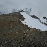 25 Roquerios en la Cumbre del Co. Los Cristales 3.057msnm