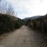 01 Camino Vecinal en el Manzano