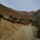 02 Camino Vehicular