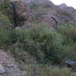 01 Quebrada