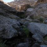12 Hilo de Agua