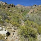 03 Quebrada en Cara N Co. Nido de Condor 2.352msnm