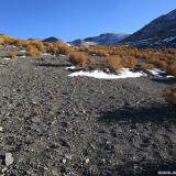 06 Entre Varilla Cordillerana