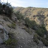 02 Sendero Animal en la Quebrada Los Gauchos