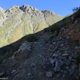 03 Camino de Cabras