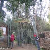 01 Acceso Parque Quebrada de Macul