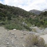 11 Huella Animal Bordeando el Rio Clarillo