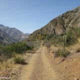 01 Camino Vehicular Fundo El Ingenio