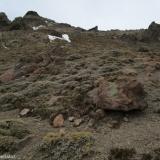 15 Pasada de Rocas en el Filo O del Co. Sargento del Quempo 3.803msnm