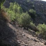 09 Sierra Ortiga
