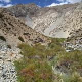 05 Quebrada Paiguano