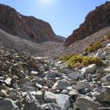 14 Estero Bajo las Piedras