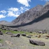 06 Quebrada Estero Salinillas