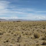 02 Altiplano Boliviano & Lago Titicaca