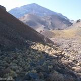 07 Cerro Las Tortolas 6160msnm