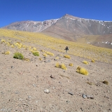 05 Hacia el Campo Alto Vn. Palpana 6.028msnm