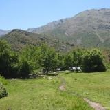 08 Valle Del Venado