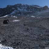 16 Ladera Arriba sobre Material Volcanico
