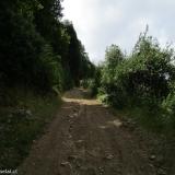 03 Antiguo Camino Maderero
